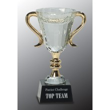 7 3/4 in. Crystal Cup with Gold Handles & Stem