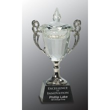 8 in. Crystal Cup with Silver Handles & Stem
